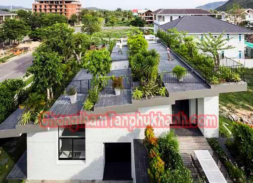 chống thấm sàn mái để trồng cây